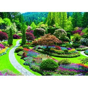 Paskendęs sodas