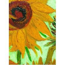 Dvylika saulėgražų - Fragmentas. Vincentas Van Gogas