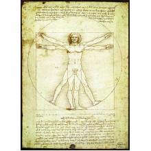 Vitruvijaus Žmogus. Leonardas Da Vincis